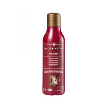 Obnovujúci šampón, COLOR FIXATION